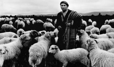 'El pastor' (1963)