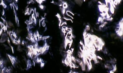 Una de las imágenes abstractas que forma la superficie del agua y que el artista retrata en sus obras