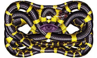 Una serpiente enroscada con un ojo en el centro en una de las obras de la artista eslovaca