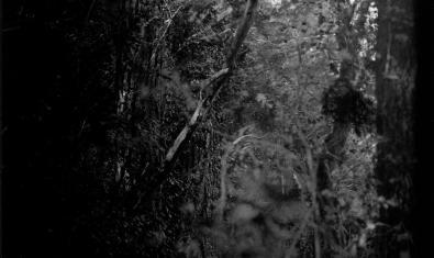 Fotografia part de 'Murmullo', de Kati Riquelme