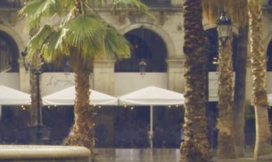 Vista de la plaza Real con los característicos porches y palmeras en primer término