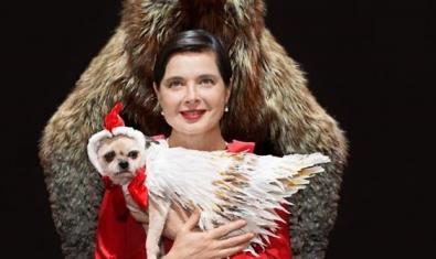 Isabella Rossellini amb el gos que també surt a l'espectacle