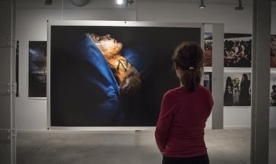 Una visitant contempla una fotografia de gran format que forma part de l'exposició