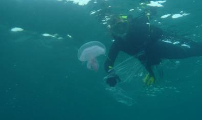 Submarinista con una medusa