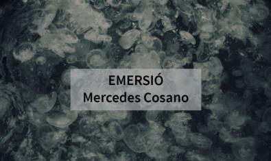 Una de las imágenes de la artista que hace la función de cartel para anunciar la exposición muestra un grupo de medusas