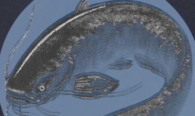 El dibuix d'un silur monstruós com els que viuen al riu Ebre serveix per a promocionar el concert