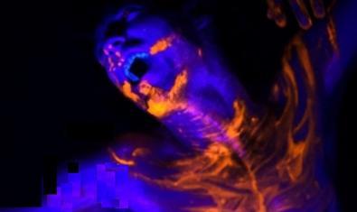 L'artista il·luminat per una llum blava en un moment de la representació