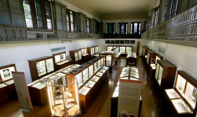 Interior del Museu Martorell