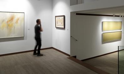 Exposició Naturalesa abstracta