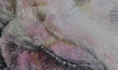 PèlAPèl es el título de la exposición de Olga Muñoz