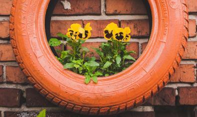 Imagen de un neumático reutilizado como maceta