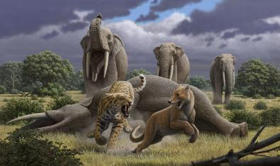 Sabre-toothed cats and mastodons