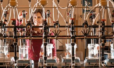 Científica al laboratori