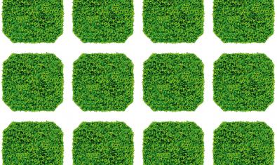 Imatge gràfica de la Setmana de la Sostenibilitat