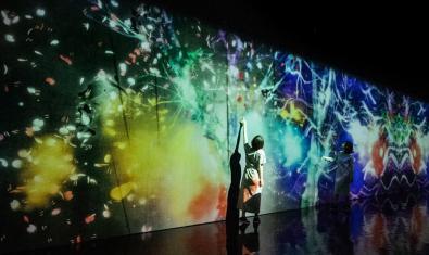 'teamLab. Art, tecnologia i natura' al CaixaForum