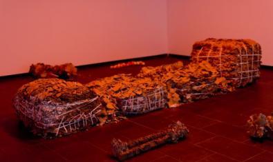 'vis.', de Júlia Spínola, a la Fundació Joan Miró