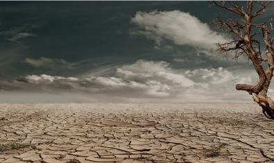 Com fer front a l'emergència climàtica?