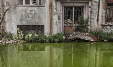 Una de les fotografies de l'exposició mostra un jardí inundat