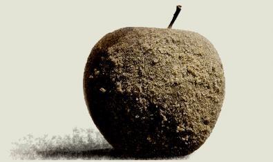 La imagen de una manzana seca y cubierta de moho sirve de cartel para anunciar el espectáculo