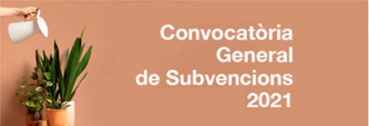 Subvencions generals