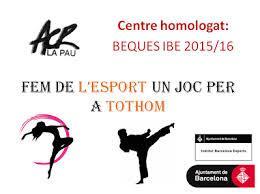 Institut Barcelona Esports