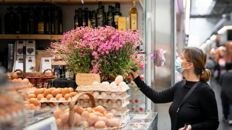 "Egg stall at Mercat de Sant Antoni with flower pots of the ""Plant me on the balcony"" campaign and a customer looking at the plants"