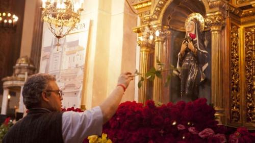Roses Santa Rita
