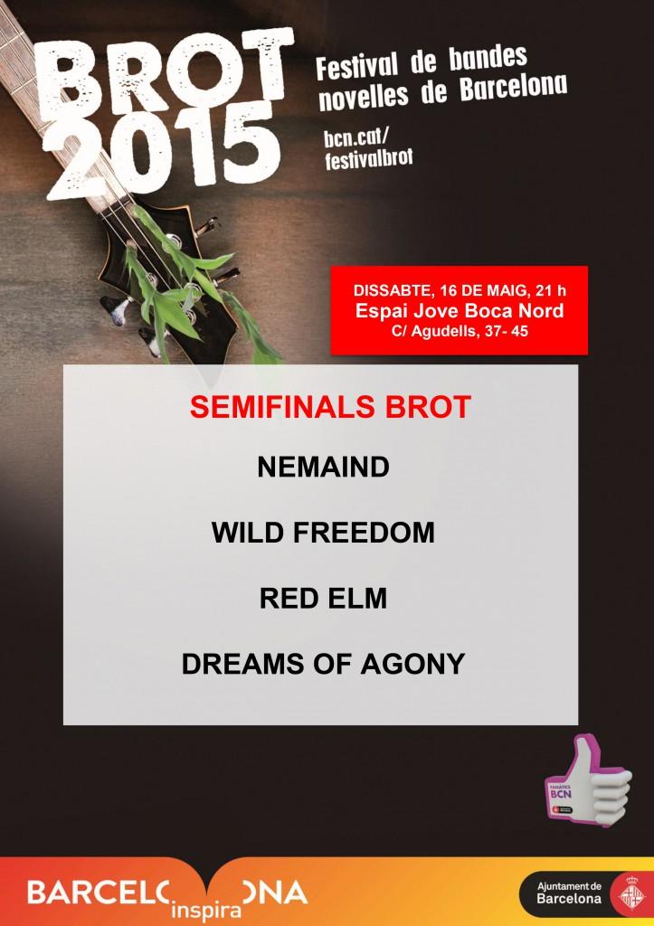 6a semifinal  Brot 2015 Boca Nord