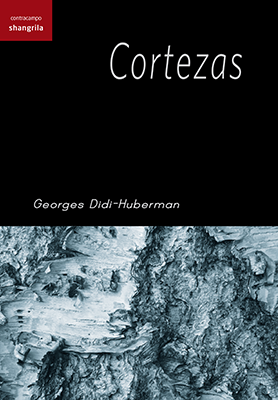 Llibre: Cortezas. Georges Didi-Huberman