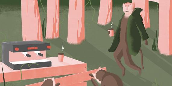 Il·lustració d'uns micos en un parc vestits com científics © Ana Yael Zareceansky