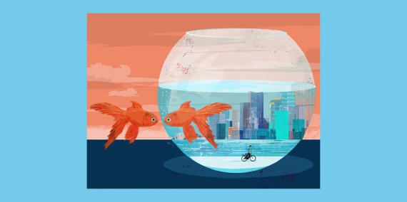Illustration © Eva Vázquez. A fish looks at its reflection in a fish tank from the outside. The inside the fish bowl features a cityscape and a boy on a bicycle.