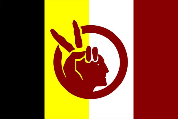 Bandera del Moviment Indi Americà