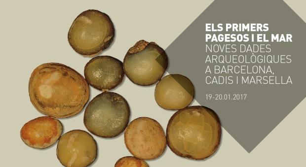 Dents de peixos de la família dels espàrids consumits a la Barcelona neolítica (Caserna de Sant Pau del Camp, 5.500 a.n.e.). Fotografia: Jordi Nadal, UB