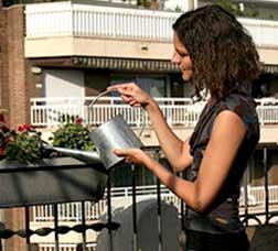 Una dona rega unes plantes a la terrassa d'un pis