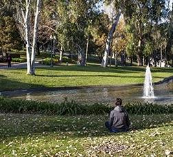 Chico sentado en un parque mirando hacia un lago