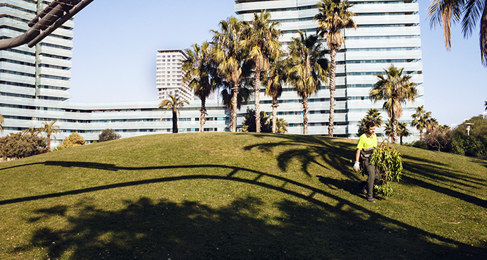 Trabajador de Parques y Jardines recogiendo ramas cortadas de los árboles