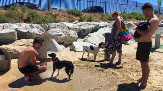 Área de acceso para ciudadanos con perros