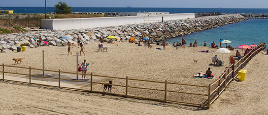 Llevant beach area for city residents with dogs.