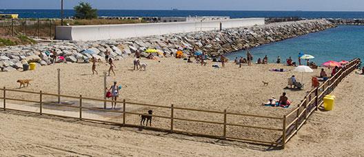 área para ciudadanos con perros en la playa de Llevant.