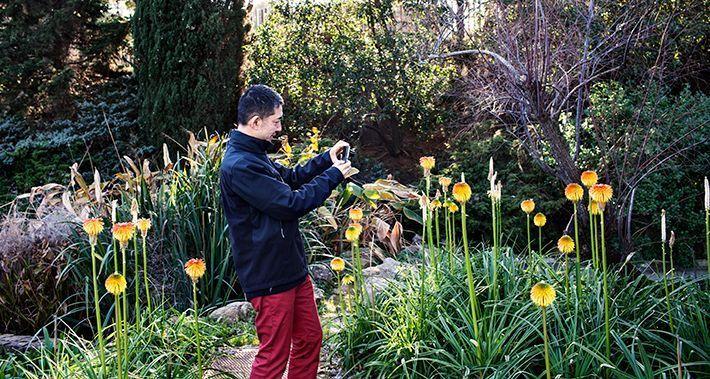 Home fent una fotografia de la vegetació d'un parc