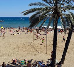 Vista de una playa con palmeras y un grupo de personas que juega a vóley