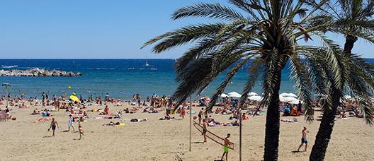 Vista d'una platja amb palmeres i un grup de persones que juga a vòlei